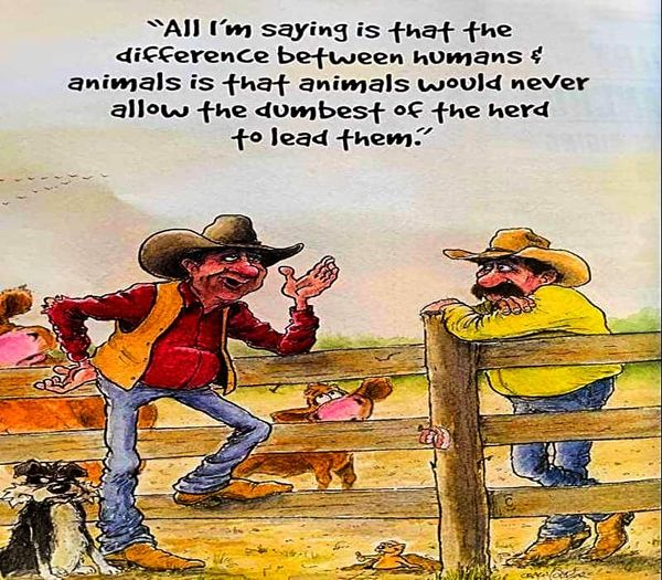 Funny Pictures, Sayings and Cartoons-xbbbb-jpg