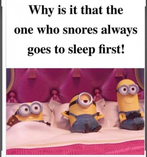 Funny Pictures, Sayings and Cartoons-x6-jpg