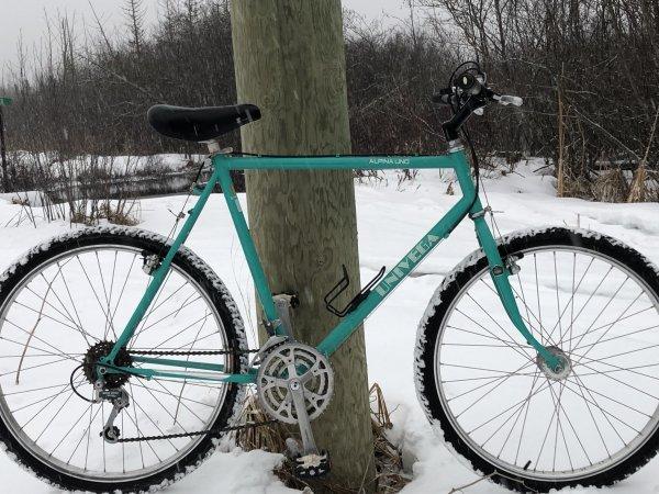 The Cyclist Thread-be15d46c-74d0-4d64-b0aa-82ab4d8c4233-jpg
