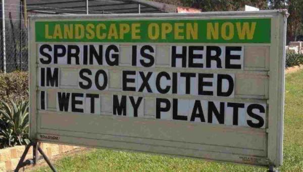 Funny Pictures, Sayings and Cartoons-excited-wet-plants-1-jpg