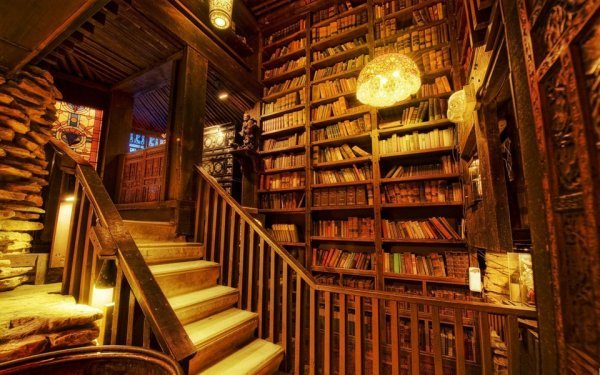 Lovely Bookish Pictures-library-1-jpg