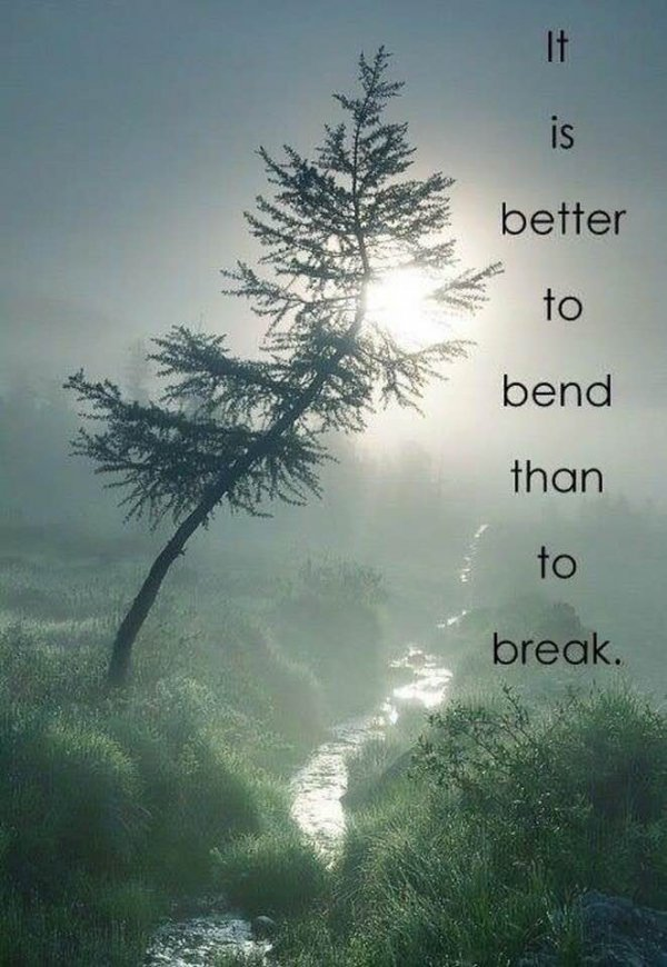 Inspirational Quotes and Memes-xll-jpg