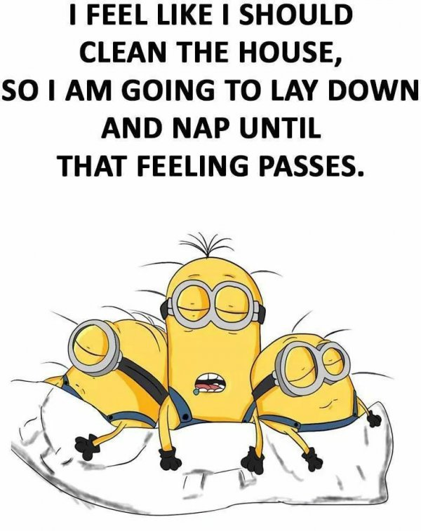 Funny Pictures, Sayings and Cartoons-xd-jpg