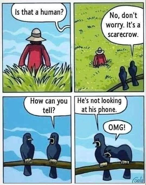 Funny Pictures, Sayings and Cartoons-capture-jpg