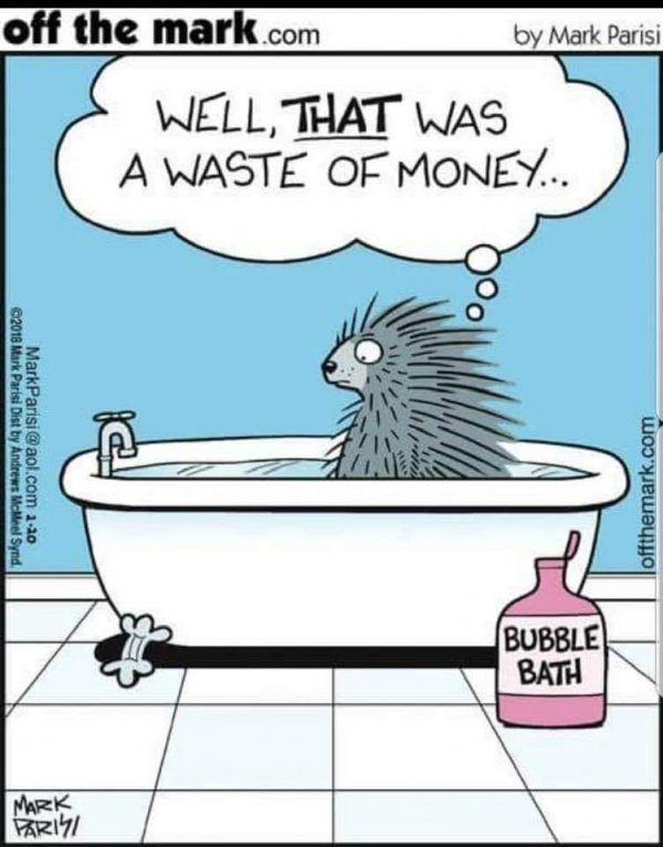 Funny Pictures, Sayings and Cartoons-xbb-jpg