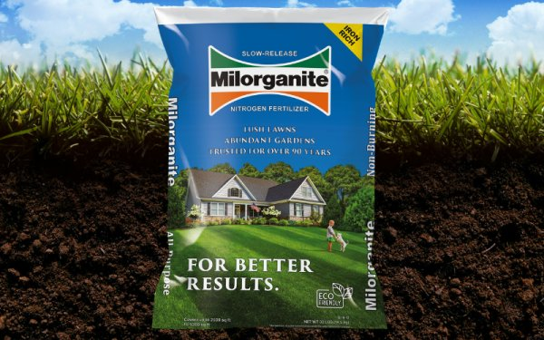 Reseed/Overseed-lawncarelandingpageratesschedules800x500-jpg