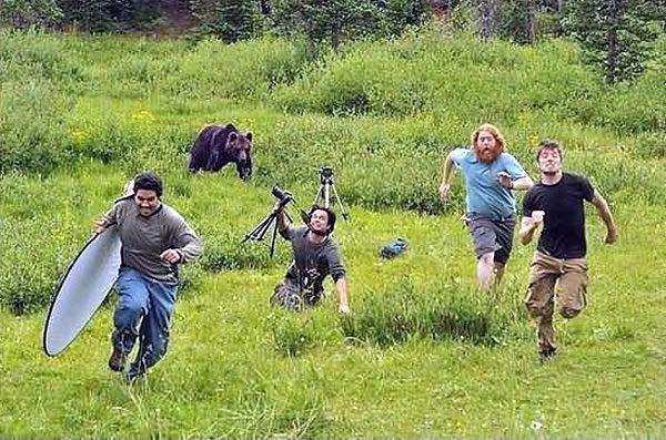 Name:  bears.jpg Views: 33 Size:  79.0 KB