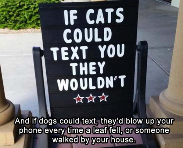 Name:  if-dogs-could-text.jpg Views: 47 Size:  60.2 KB